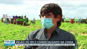 Melão do RN é comercializado na China